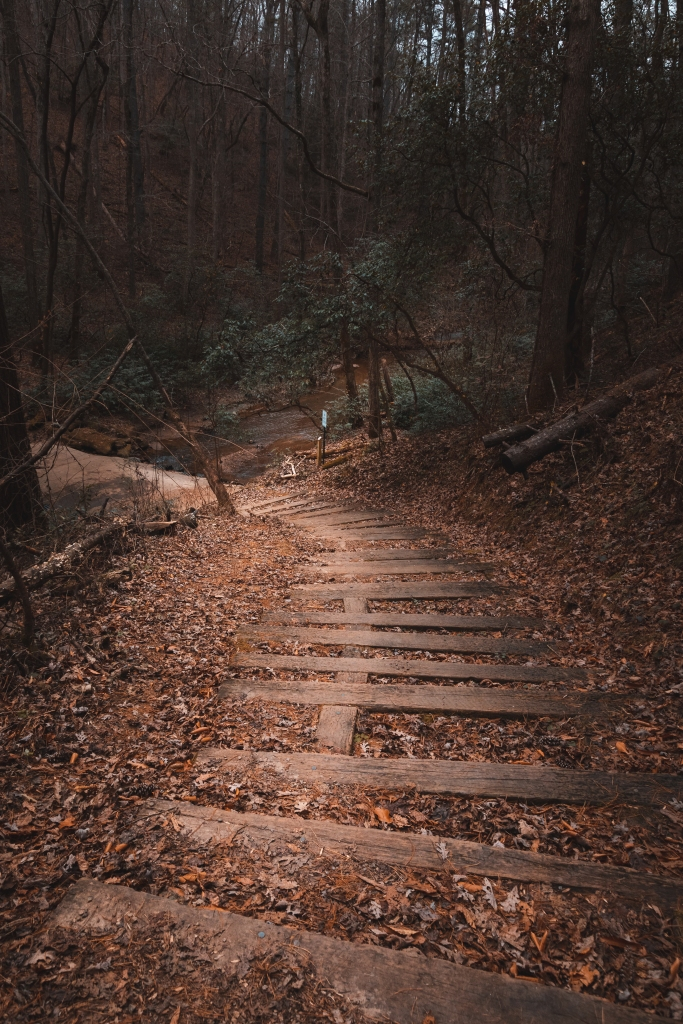 stairs leading to a creek